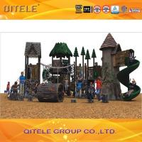 China Natural Children Play Area Equipment , Resin Materail With Galvanized Steel Parts wholesale