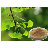 China Low Ginkgolic Acid Ginkgo Biloba Leaf Extract Powder Effective Dilate Blood Vessels wholesale