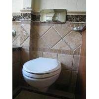 China White Ceramic Finish Stylish Space Saving Design with a Modern Look inc. Soft Close Seat Wall-Hung WC Pan With Toilet Seat on sale