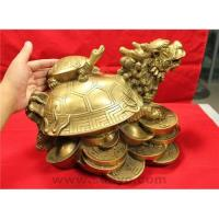 China Dragon head turtle tortoise wholesale