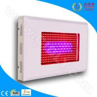 China Dua-Band 300W LED Grow Light wholesale