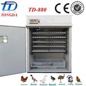 China best quality automatic  egg incubator TD-880 wholesale