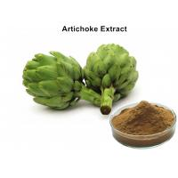 China Artichoke Leaf Extract Plant Extract Powder Cynarin And Chlorogenic Acid For Weight Loss wholesale