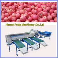 China apple sorting machine, mango sorting machine wholesale