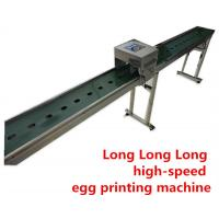 China 600 DPI Egg Continuous Inkjet Printer For Chicken Farm Production Line wholesale