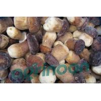 China frozen porcini mushroom wholesale