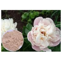 China Peony Root Powder Natural Anti Inflammatory Supplements Water Solvent CAS 23180 57 6 wholesale