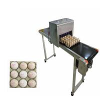 China Egg Printing Machine For Spherical / Egg Jet Printer Machine Low Cost Of Consumption wholesale