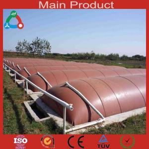 China Waste treatment  biogas equipment for farm wholesale