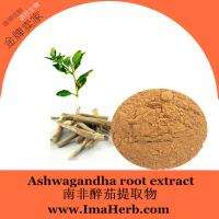 China High Quality ashwagandha root powder Extract  for Men Health 1%;2.5%;3%;5% Withanolides wholesale