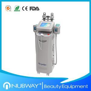 China Cryolipolysis fat freeze slimming machine 3 in 1 wholesale