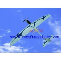 China SPEEDY glider airplane model wholesale