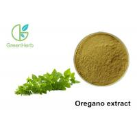 China Oregano Herb Origanum Vulgare Extract Powder Whole Herb Parts Healthcare wholesale