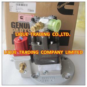 China Genuine and New CUMMINS Fuel Pump 3090942 , 4954877 , cummins original and new on sale