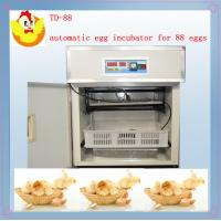 Buy cheap small egg incubator TD-88 from wholesalers