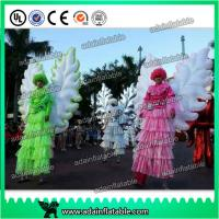China Beautiful Festival Holiday Event Parade Walking Inflatable Wing Costume Customized wholesale