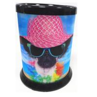 China 3D Lenticular Printing Service / Plastic Pencil Holder for School and office wholesale