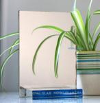 China Light Pink Aluminum Mirror wholesale