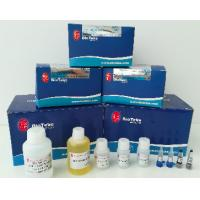 Buy cheap Plant RNA Extraction Kit 50 Preps / 100 Preps Fast Kit For Isolation Of RNA From Plants from wholesalers