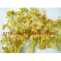 China dehydrated cauliflowers wholesale