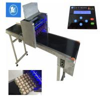 China 6 Heads Eggs Continuous Ink System Printer With Custom English / Chinese Font wholesale