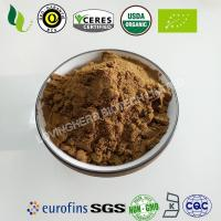 China Lovingherb Organic reishi mushroom powder  organic reishi mushroom extract powder certified organic reishi cheap price wholesale