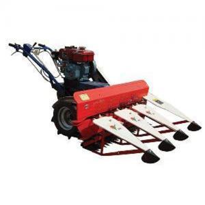 China paddy rice harvest machine wholesale