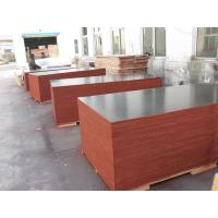 China Film Faced Decorative Plywood Sheets 2 Times Hot Press High Strength Design wholesale