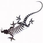 China OEM/ODM Dragon water transfer temporary tatoo sticker wholesale