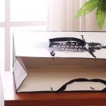 White Custom Printed Paper Bags Promotional Kraft Paper Gift Bags Logo Printing