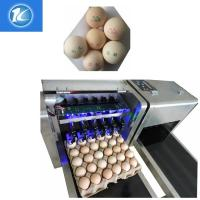 China Economical Consumable Material Egg Packaging Machine / Egg Spraying Machine wholesale