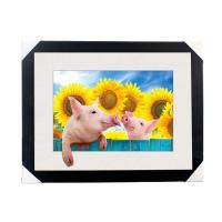 Quality 0.6mm PET 5D Lenticular Printing Services With Cute Animal Photos For Gift / Advertisement for sale