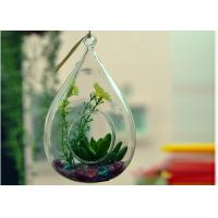 China Hanging Teardrop Glass Terrarium , Hanging Glass Teardrop Candle Holders wholesale