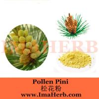 China Factory supply cell wall broken pine pollen powder from Felicia@imaherb.com wholesale
