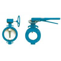 China butterfly valve with worm, nylon coated disc butterfly valve wholesale