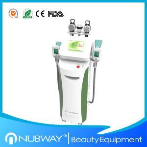 China cryolipolysis machine/Cryolipolysis slimming machine with optional lipo laser pads wholesale
