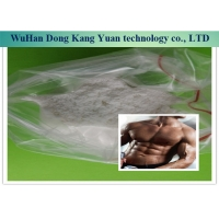 China 99% Halotestin Steroid Hormone Powder 76-43-7 For Get Muscle wholesale