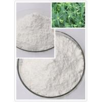 China Ingenol Pure Natural Herbal Extracts Euphorbia Source CAS 30220-46-3 C20H28O5 on sale