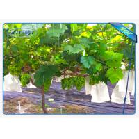 China Enviro Vegetable garden weed barrier Anti UV Polypropylene Non Woven Ground Weed Control Fabric wholesale