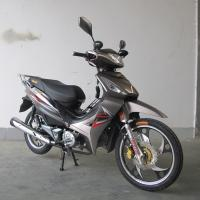 China TR135-AD Cub Motorcycle wholesale