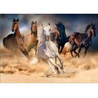 Quality 50 x 70cm Large Poster 3d Lenticular Image Printing Service For Advertisement for sale