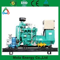 China 20KW Industry biogas generator with green energy wholesale