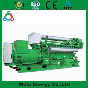 China 2014 Green Energy Good quality biogas generator wholesale