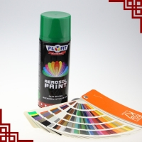 China Plastic Coating TUV Aerosol Spray Paint Quick Drying Lacquer Spray wholesale