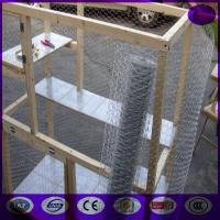 """China 48"""" x 150' ft 1"""" Mesh Galvanized Poultry Netting Chicken Wire Fence wholesale"""