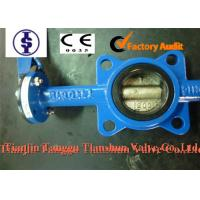 China ANSI Actuated Cast Iron Butterfly Valve with PTFE , Nylon , Lubricated Bronze Bushing wholesale