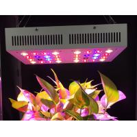 China Full Spectrum UV IR Led Grow Lamp , Led Growing Lights 60 Degree Beam Angel wholesale