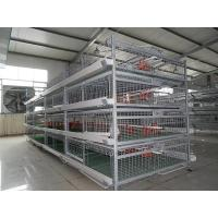 China Baby ChicKen Cage wholesale