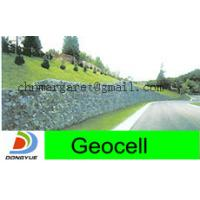 China geocell for green retaining walls wholesale