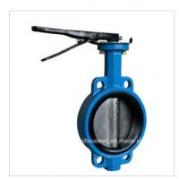 China Pinless Wafer and Lug Type Butterfly Valve wholesale